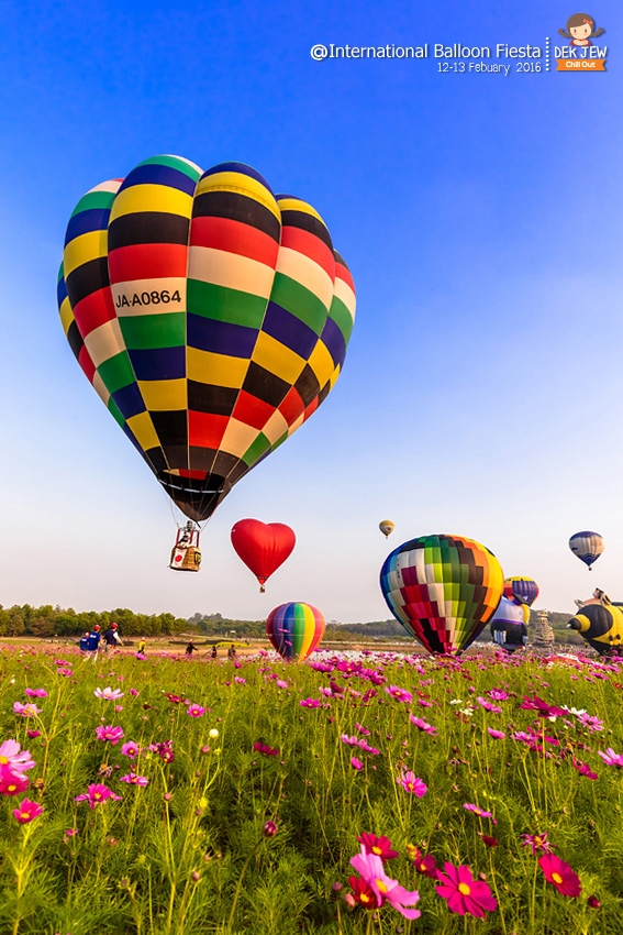 Singha Park International Balloon Fiesta 2016